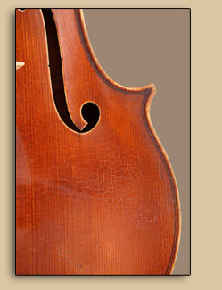 1995 Viola for Linda Ghidossi-DeLuca — Antiquing Close-Up